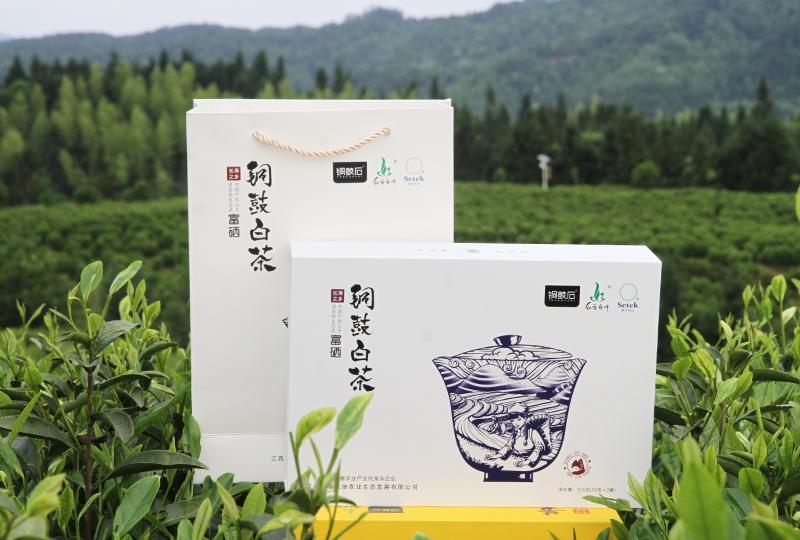 浙江铜鼓白茶